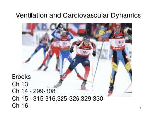 Ventilation and Cardiovascular Dynamics