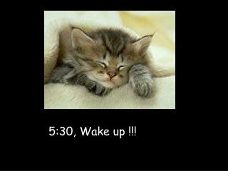 5:30, Wake up !!!