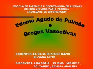 ESCOLA DE FARMÁCIA E ODONTOLOGIA DE ALFENAS                     CENTRO UNIVERSITÁRIO FEDERAL