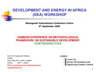 DEVELOPMENT AND ENERGY IN AFRICA (DEA) WORKSHOP
