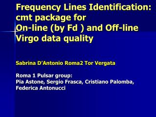 Data quality tool: frequency domain lines identification by the PSS library (Rome 1 group)