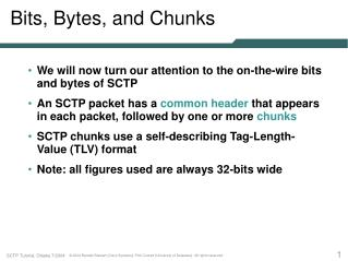 Bits, Bytes, and Chunks