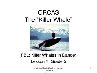 "ORCAS The ""Killer Whale"""