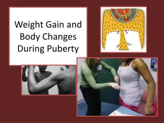 Weight Gain and Body Changes During Puberty