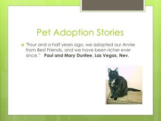 Pet  A doption Stories