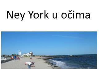 Ney  York u očima