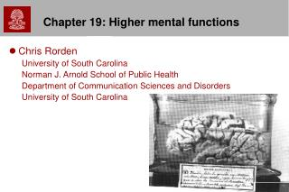 Chapter 19: Higher mental functions
