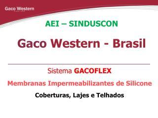 AEI – SINDUSCON Gaco  Western - Brasil