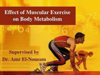 Effect of Muscular Exercise on Body Metabolism