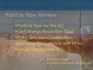 Particle Flow Review