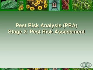 Pest Risk Analysis (PRA) Stage 2: Pest Risk Assessment
