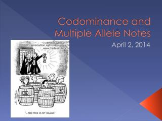 Codominance and Multiple Allele Notes