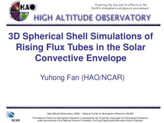3D Spherical Shell Simulations of Rising Flux Tubes in the Solar Convective Envelope