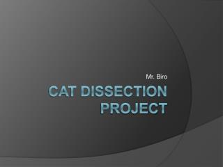 Cat Dissection Project