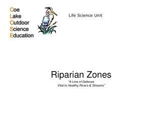 "Riparian Zones  ""A Line of Defense Vital to Healthy Rivers & Streams"""