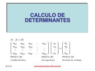 CALCULO DE DETERMINANTES