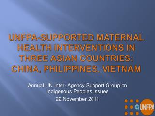 Annual UN Inter- Agency Support Group on Indigenous Peoples Issues 22 November 2011