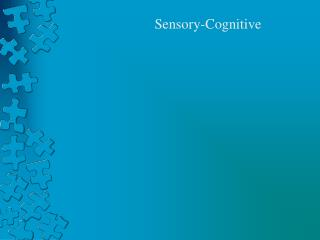 Common Sensory-Cognitive Disorders in Children