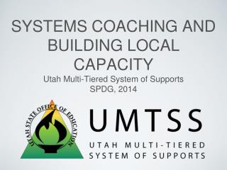 Systems Coaching and Building Local Capacity