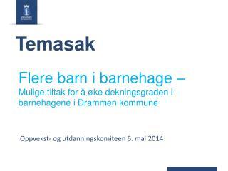 Flere barn i barnehage –  Mulige tiltak for å øke dekningsgraden i barnehagene i Drammen kommune