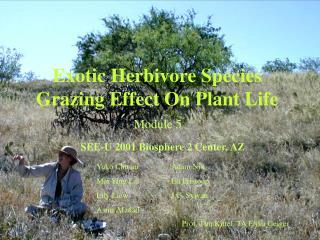 Exotic Herbivore Species Grazing Effect On Plant Life