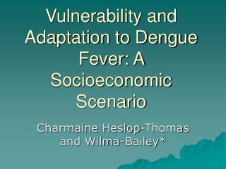 Vulnerability and Adaptation to Dengue Fever: A Socioeconomic Scenario