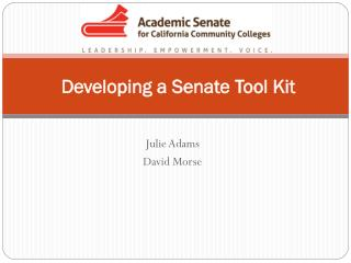 Developing a Senate Tool Kit