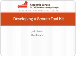 Developing a Senate Tool Kit