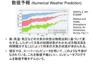 数値予報  ( Numerical Weather Prediction)