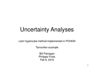 Uncertainty Analyses