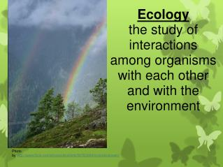 Ecology the study of interactions among organisms with each other and with the environment