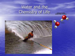 Water and the             Chemistry of Life