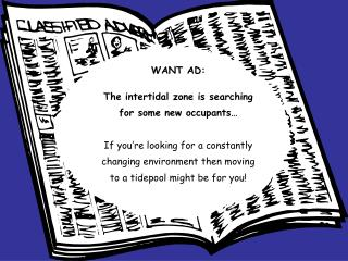 WANT AD:  The intertidal zone is searching for some new occupants    If you re looking for a constantly changing environ