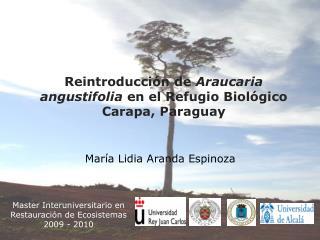 Master Interuniversitario en Restauraci ón de Ecosistemas 2009 - 2010