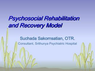 Psychosocial Rehabilitation and Recovery Model