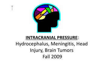 INTRACRANIAL PRESSURE : Hydrocephalus, Meningitis, Head Injury, Brain Tumors  Fall 2009