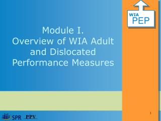 Module I.  Overview of WIA Adult and Dislocated Performance Measures
