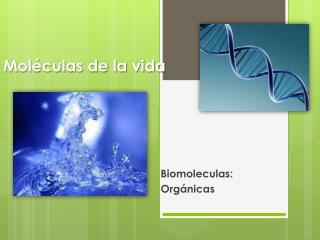 Moléculas de la vida
