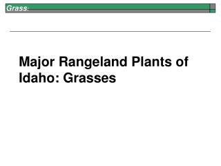 Major Rangeland Plants of Idaho: Grasses
