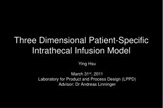 Three Dimensional Patient-Specific Intrathecal Infusion Model
