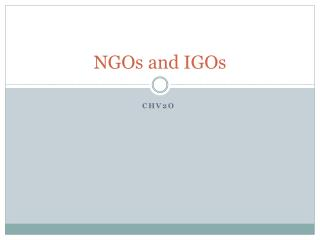 NGOs and IGOs
