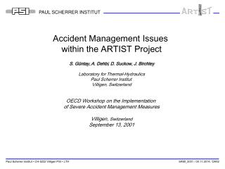 Accident Management Issues  within the ARTIST Project