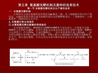 第五章  氨基酸发酵机制及菌种的选育技术 第一节 谷氨酸发酵机制及生产菌的选育      一、谷氨酸发酵机制