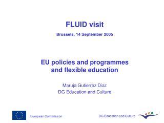 FLUID visit  Brussels, 14 September 2005