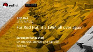 For Red Hat, it's 1994 all over again Sarangan Rangachari VP and GM, Storage and Big Data Red Hat