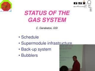 STATUS OF THE  GAS SYSTEM C. Garabatos, GSI