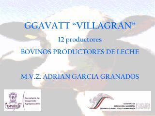 """GGAVATT """"VILLAGRAN"""" 12 productores BOVINOS PRODUCTORES DE LECHE M.V.Z. ADRIAN GARCIA GRANADOS"""