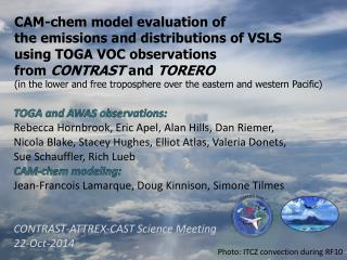 CAM-chem model evaluation of  the emissions and distributions of VSLS  using TOGA VOC observations