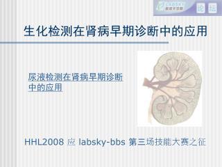 HHL2008  应  labsky-bbs  第三场技能大赛 之征