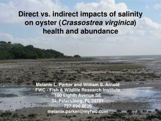 Direct vs. indirect impacts of salinity on oyster ( Crassostrea virginica ) health and abundance